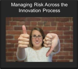 innovation risk management