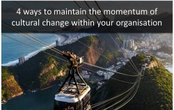 Maintain the Momentum of Cultural Change within Your Organisation