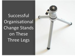 Successful Organisational Change Stands on These Three Legs